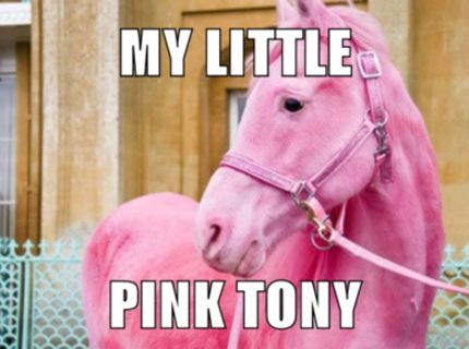 My little pink tony