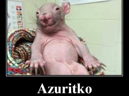 Azuritko