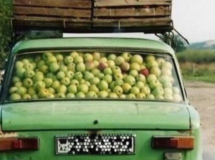 Jablková sezóna :D