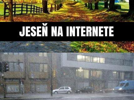 Jeseň na internete vs pohľad z môjho okna D: