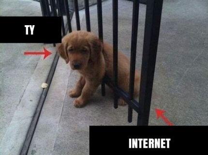 Ty VS internet