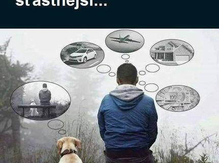 Krásne .. logika psíka a človeka