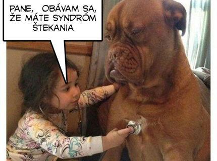 Má aj váš psík syndrom štekania ?:D