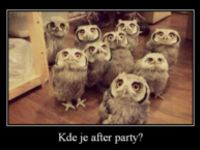 Kde je after party?