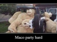 Maco party hard